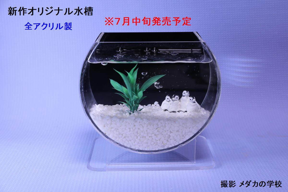 オリジナル水槽